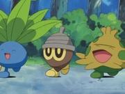 EP339 Pokémon salvajes.jpg