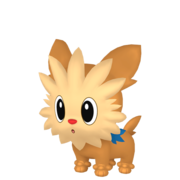 Lillipup HOME.png