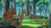 P11 Pokémon del bosque.png