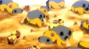 P18 Pokémon del desierto.png