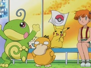 EP271 Politoed, Pikachu y Psyduck animando a Ash.jpg