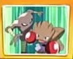 EP459 Hitmonlee y Hitmonchan en pantalla.jpg