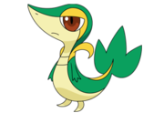 Snivy (anime NB).png