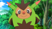 EP898 Quilladin.png