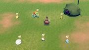 Pokémon alrededor del cocinado de curri EpEc.jpg