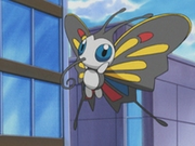 EP344 Beautifly.png