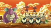 EP797 Pokémon de la Isla Palmera.png