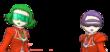 VS Caléndula y Begonia.png