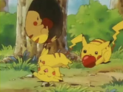 EP039 Pikachu comiendo y jugando.png