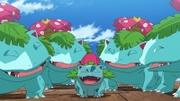 Archivo:EP1092 Bulbasaur salvajes evolucionando.webm