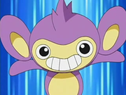 EP480 Aipom (2).png