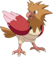 Spearow (anime AG).png