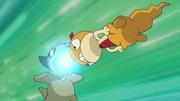 EP677 Choque entre Golpe cabeza del Scraggy de Ash y el Furia dragón del Axew de Iris.jpg