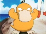 EP093 Psyduck.png