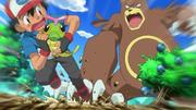 EP792 Ursaring atacando a Ash y Caterpie.png