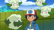 EP718 Cottonee.png