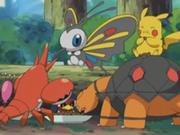 EP342 Pokémon de Ash y May comiendo.png