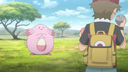 PO04 Chansey.png