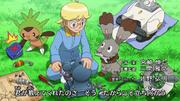 OPJ17 Pokémon de Lem.png