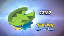 Lotad