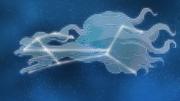 EP1022 Constelación de Ninetales de Alola.png