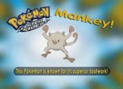 EP225 Pokémon.png