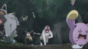 GEN08 Pokémon del bosque (2).png