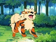 EP416 Arcanine.png