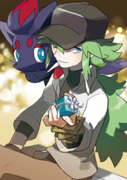 N y Zorua White Day.png