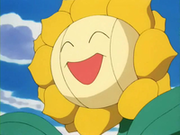 EP189 Sunflora.png