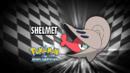 EP711 Quién es ese Pokémon.png