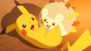 EP949 Pikachu y Togedemaru jugando.png