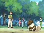 EP398 Coordinadores Pokémon (6).png