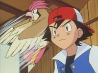 Pidgeotto de Ash usando remolino.