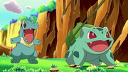 PK18 Totodile y Bulbasaur.png