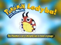 """""""Este Pokémon es muy tímido y le gusta viajar en grupos""""."""