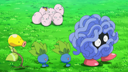 EP985 Pokémon de tipo planta.png