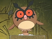 EP455 Hoothoot.png