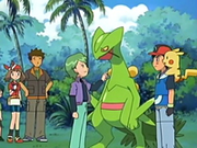 EP439 Drew y Sceptile.png