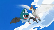 EP730 Tranquill vs. Swoobat.png