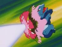 ... Venusaur usando rayo solar después de que el Tauros de Ash lo mandara a volar.