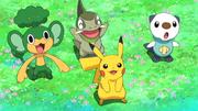 PK19 Pikachu, Oshawott, Pansage y Axew.png