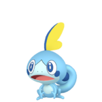 Sobble macho