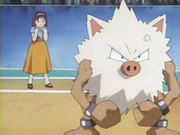 EP052 Primeape.png
