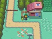 Localización del bonguri verde en la ruta 30 en Pokémon Oro HeartGold y Plata SoulSilver.