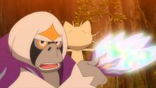 Oranguru usando mandato.