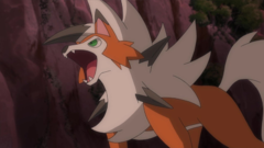 Lycanroc de Ash
