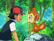 EP550 Ash con Chimchar.png