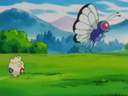 EP235 Togepi siguiendo a Butterfree.png