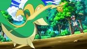 EP661 Snivy vs Pikachu.jpg
